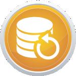 Backup Website Hosting